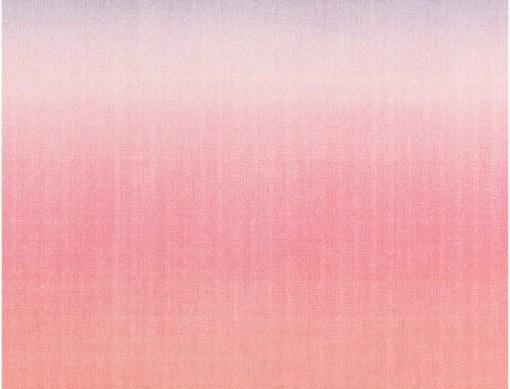 tissu rose dégradé de couleur rico design